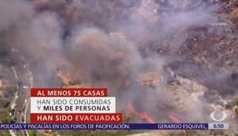 Mendocino, el incendio más grande en la historia de California