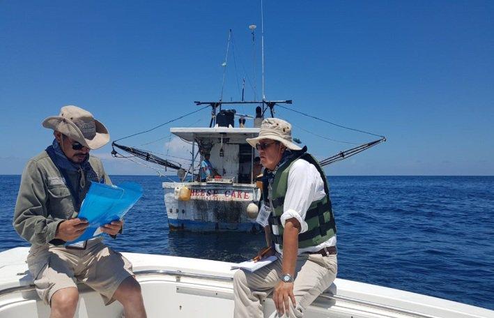 Profepa vigila zona de avistamiento del tiburón ballena