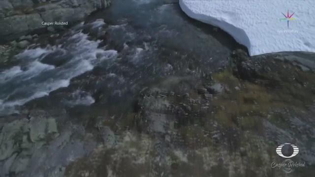 Proyecto Silencia Capta Sonidos Naturaleza Casper Rolsted
