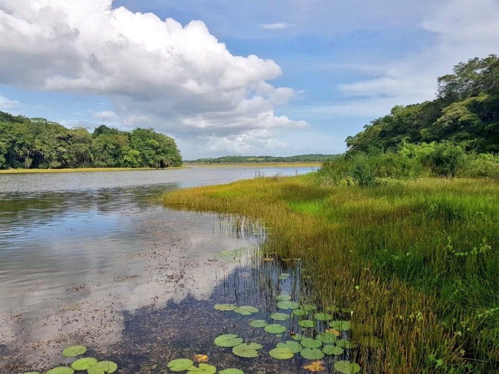 Socavones secan la laguna 'Chakanbakán' en Quintana Roo