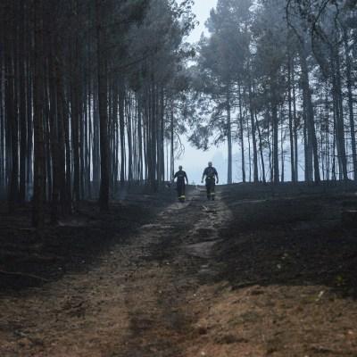Incendio forestal detona municiones de la Segunda Guerra Mundial en Alemania