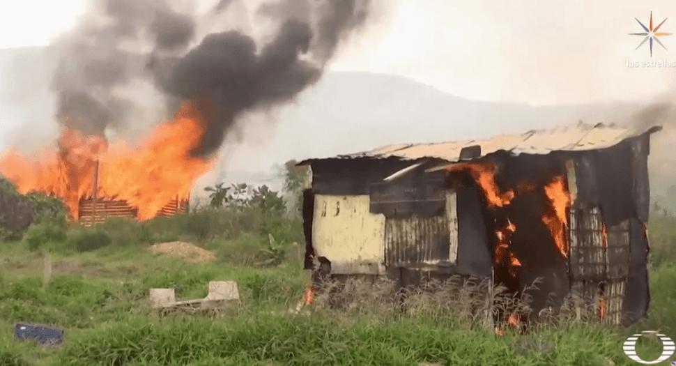 Campesinos que cultivan amapola enfrentan a criminales