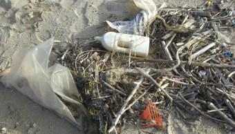zonas-costeras-mexicanas-en-grave-peligro-debido-a-altos-niveles-de-contaminacion