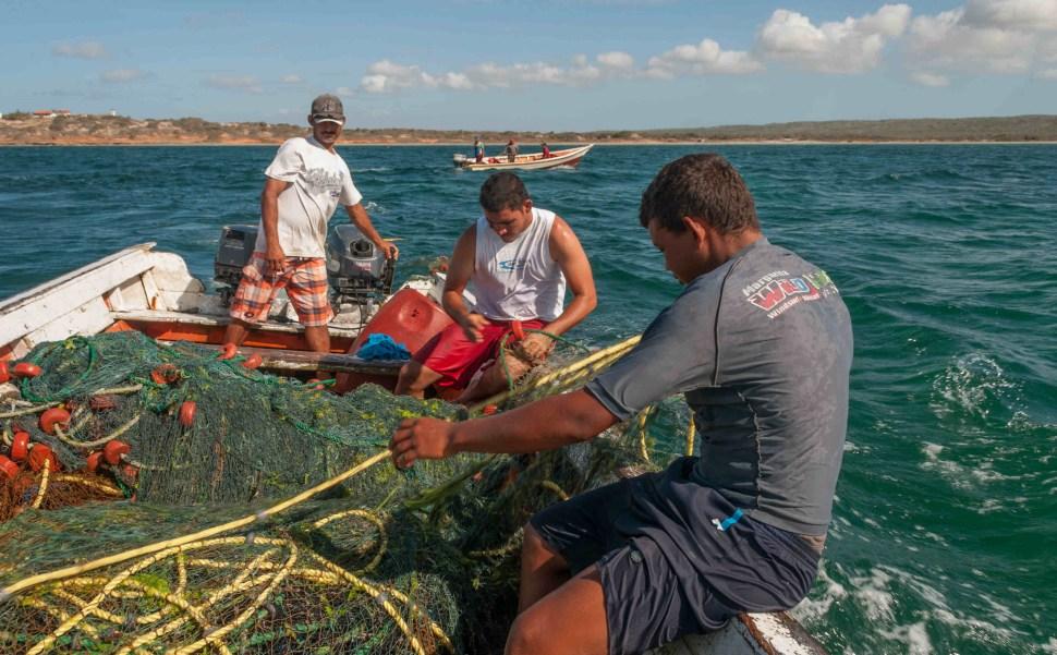 imagen-ilustrativa-pesca-zonas-costeras-mexicanas-en-grave-peligro-por-altos-niveles-de-contaminacion