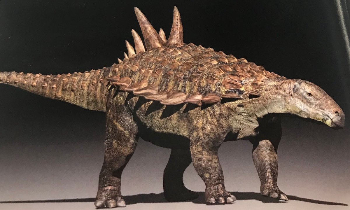 Acantholipan Gonzalezi Dinosaurio Mexicanos Coahuila Nueva Especie