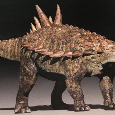Mexicanos encuentran nueva especie de dinosaurio en Coahuila