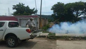 Aumento de casos de dengue causa alerta en Chiapas y Oaxaca