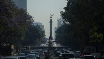 10 derechos de la Nueva Constitución de la CDMX que debes conocer