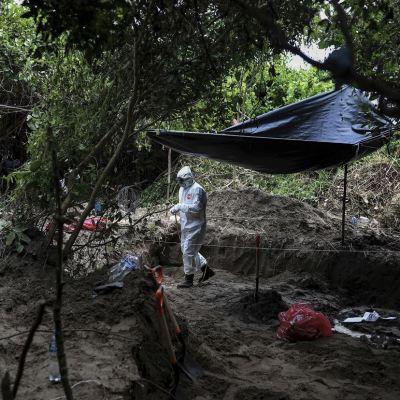 No hay reporte de hondureños en fosas halladas en Veracruz: Honduras