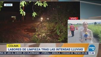Granizada en Colima destruye decenas de hectáreas de cultivos
