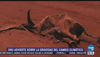 La ONU advierte sobre la gravedad del cambio climático