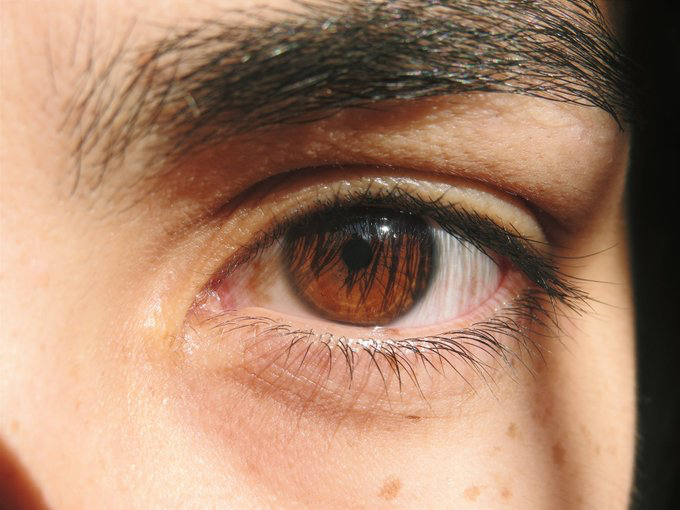La Mejor Manera Para Apreciar La Belleza De Los Ojos Cafés