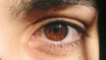 ojos marrones belleza color