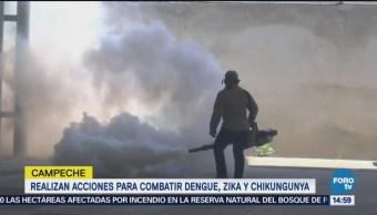 Combate dengue zika y chikungunya