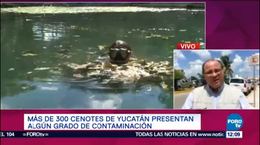 Realizan Limpieza Cenotes Yucatán