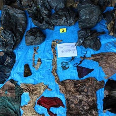 Suman 170 cuerpos hallados en fosas clandestinas en Veracruz