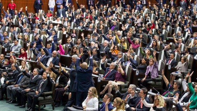 legisladores posiciones electorales legales tribunal electoral