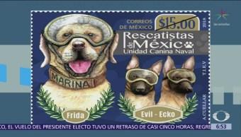 Servicio Postal Mexicano dedica estampilla a binomios canino
