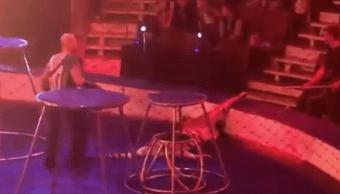 Video: Tigre convulsiona durante show de circo