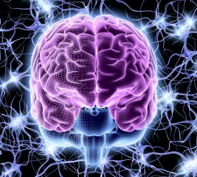 Científicos conectan tres cerebros humanos y logran compartir pensamientos