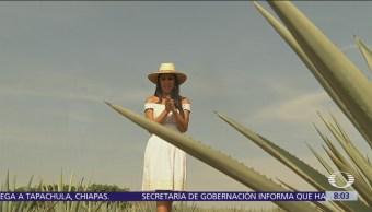 Al Aire, con Paola Rojas: Programa del 22 de octubre del 2018