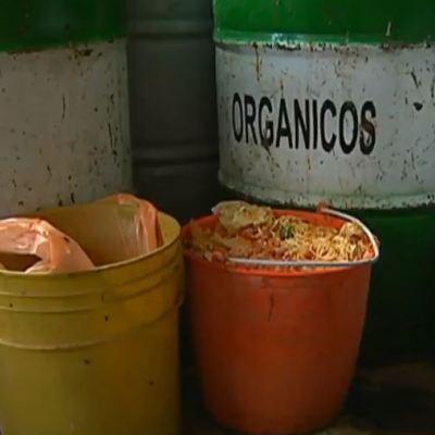 En México, cada año se desperdician 20 millones de toneladas de alimentos