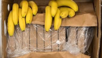 España incauta seis toneladas de cocaína ocultas en bananas