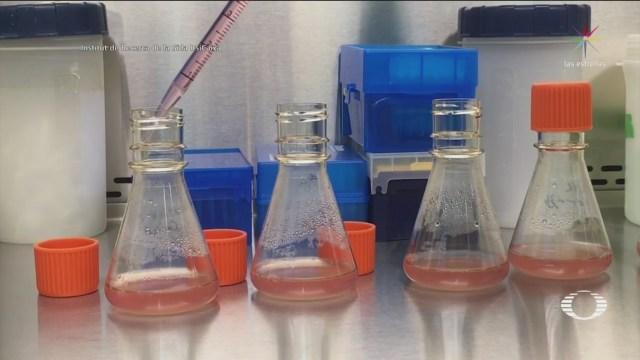 Eliminan VIH Seis Pacientes Células Madre
