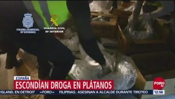 Escondían droga en plátanos en España