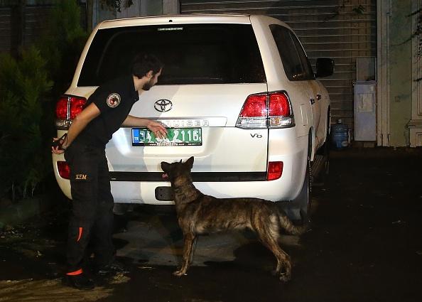 Un perro policía participó en las pesquisas. (Getty Images)