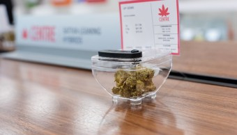 EEUU recuerda que es ilegal traer marihuana de Canadá