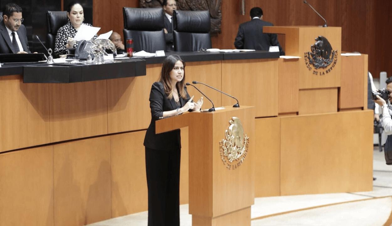 Senadores plantean prohibir uso de efectivo en el gobierno
