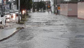 Lluvias provocan inundaciones y caída de árboles en Puebla