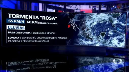 Rosa Podría Tocar Tierra San José De Las Palomas