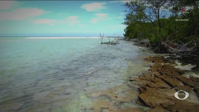 Reserva Protegida La Bocana Sisal Yucatán