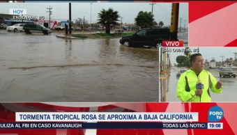 Autoridades Atentas Efectos Rosa San Quintín
