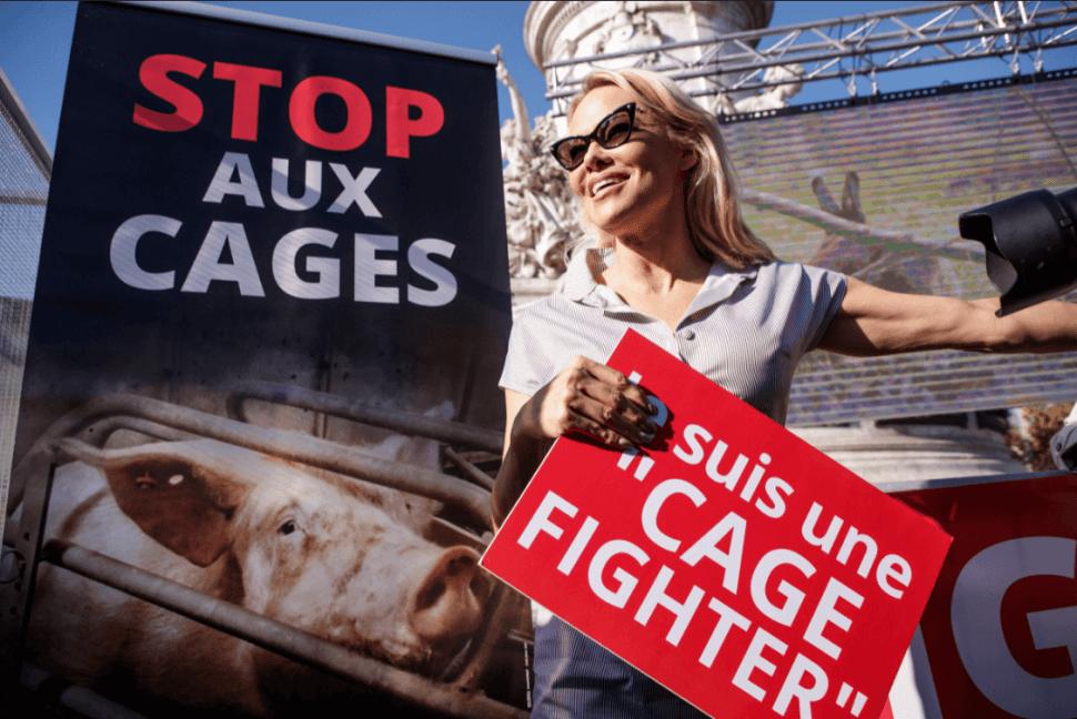 Pamela Anderson durante protesta contra el maltrato animal. (EFE)
