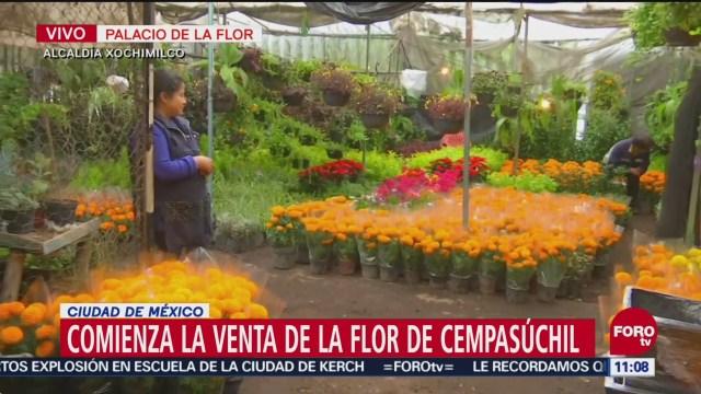 Comienza la venta de flor de cempasúchil