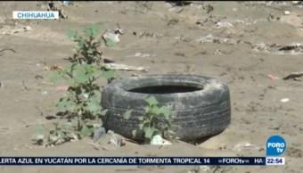 Recolectan Llantas Usadas Reciclaje Chihuahua