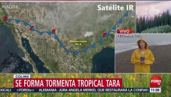 Se forma tormenta tropical Tara, en Colima