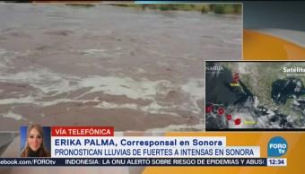 Sonora prepara albergues por lluvias de Rosa