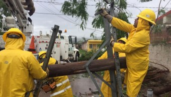 Clima Sinaloa; restablecen energía eléctrica tras paso Willa