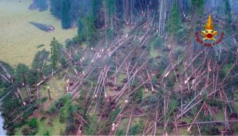Italia: Mal tiempo causa desastre forestal en los Alpes