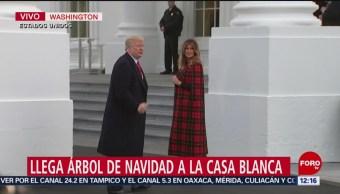Celebran llegada del árbol de Navidad a la Casa Blanca