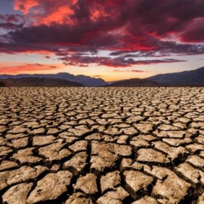 'El Niño' presenta entre 75% y 80% de probabilidad de desarrollo en febrero