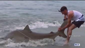 Extra, Extra: Disminuye el número de tiburones
