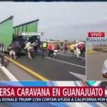 Integrantes de caravana migrante se dispersan en Guanajuato