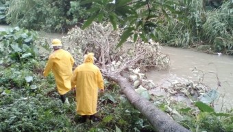 Clima Chiapas; activan alerta naranja para cuatro regiones