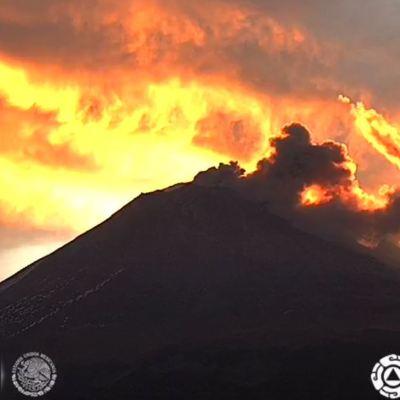 Volcán Popocatépetl registra 68 exhalaciones durante este domingo