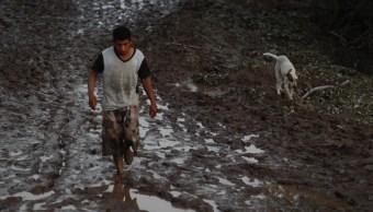 gobierno de nayarit se declara en bancarrota para atender emergencia por willa